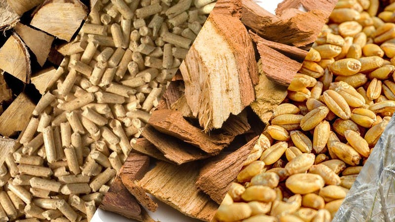Different types of Biomass Fuel