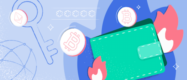 what is hot wallet header image
