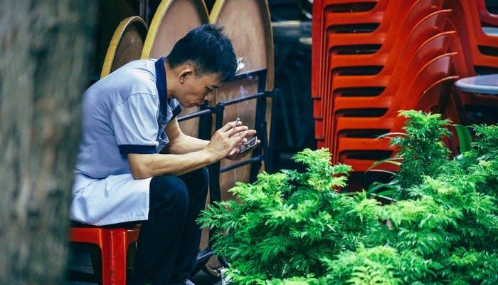 High Yielding Strains For Your Cannabis Garden