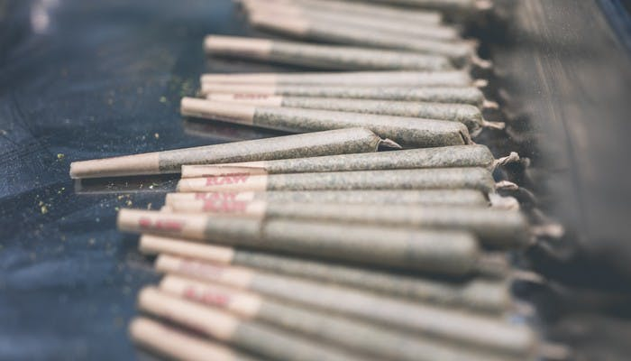 The Ultimate Guide to Joint Holders, Roach Clips and Filter Tips