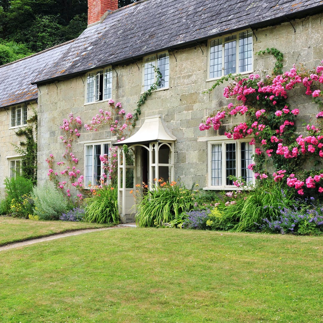 pretty large country cottage with pink flower climber