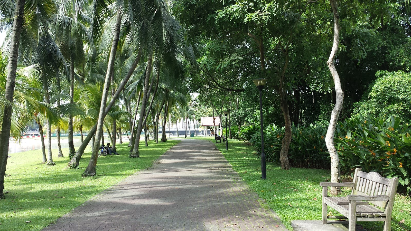 Kallang Riverside Park Jogging Track with shaded trees and sitting bench