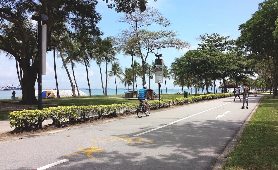 Wind down by renting a bike at East Coast Park.