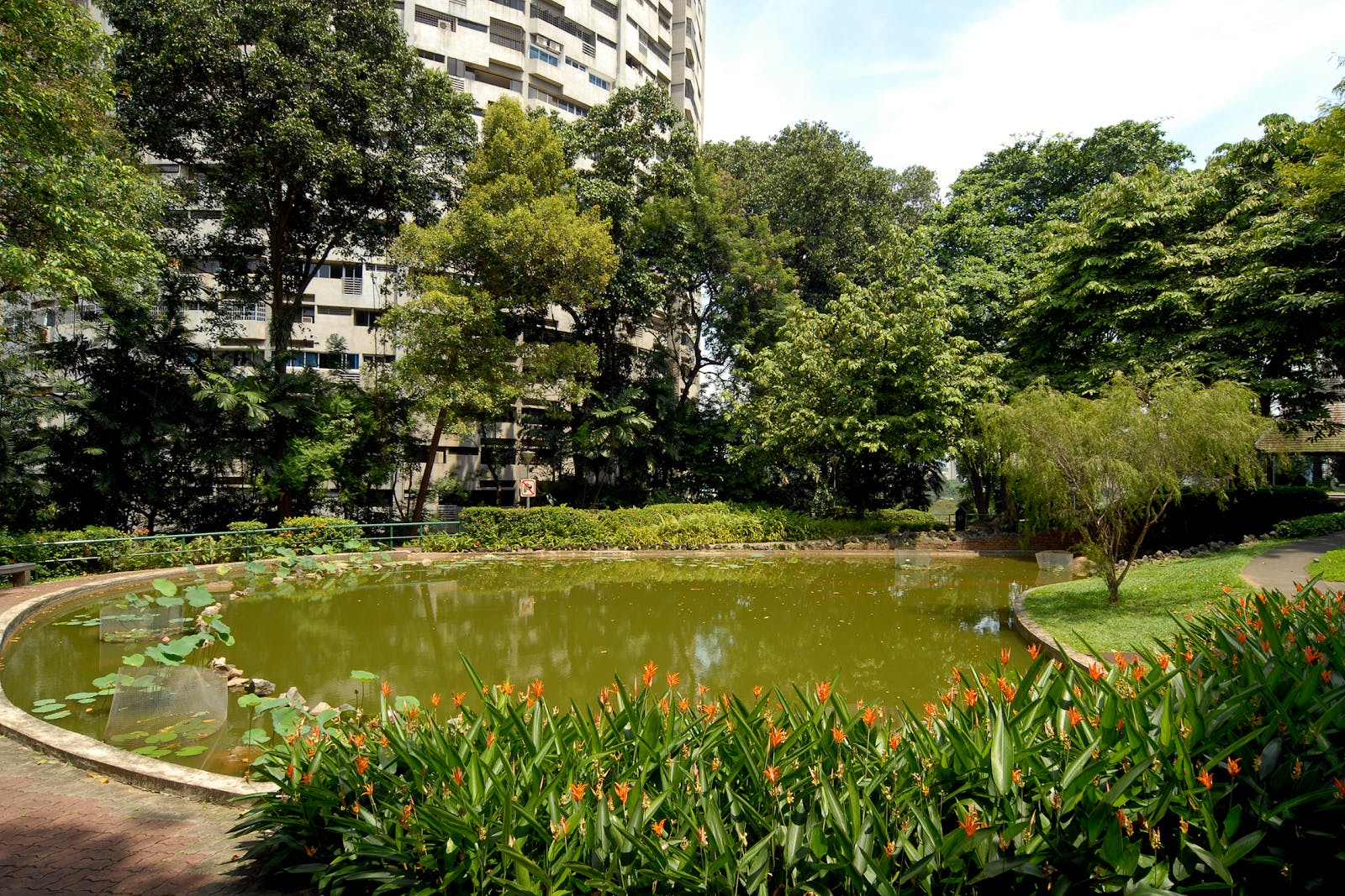 Pearl's Hill City Park