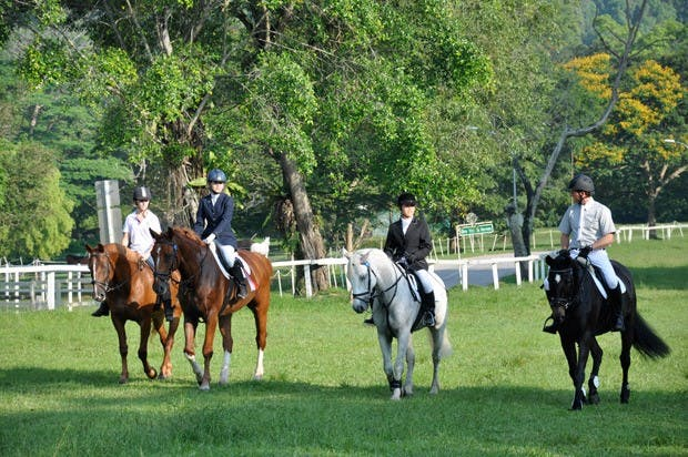 Bukit Timah Saddle Club - perfect for a weekend getaway