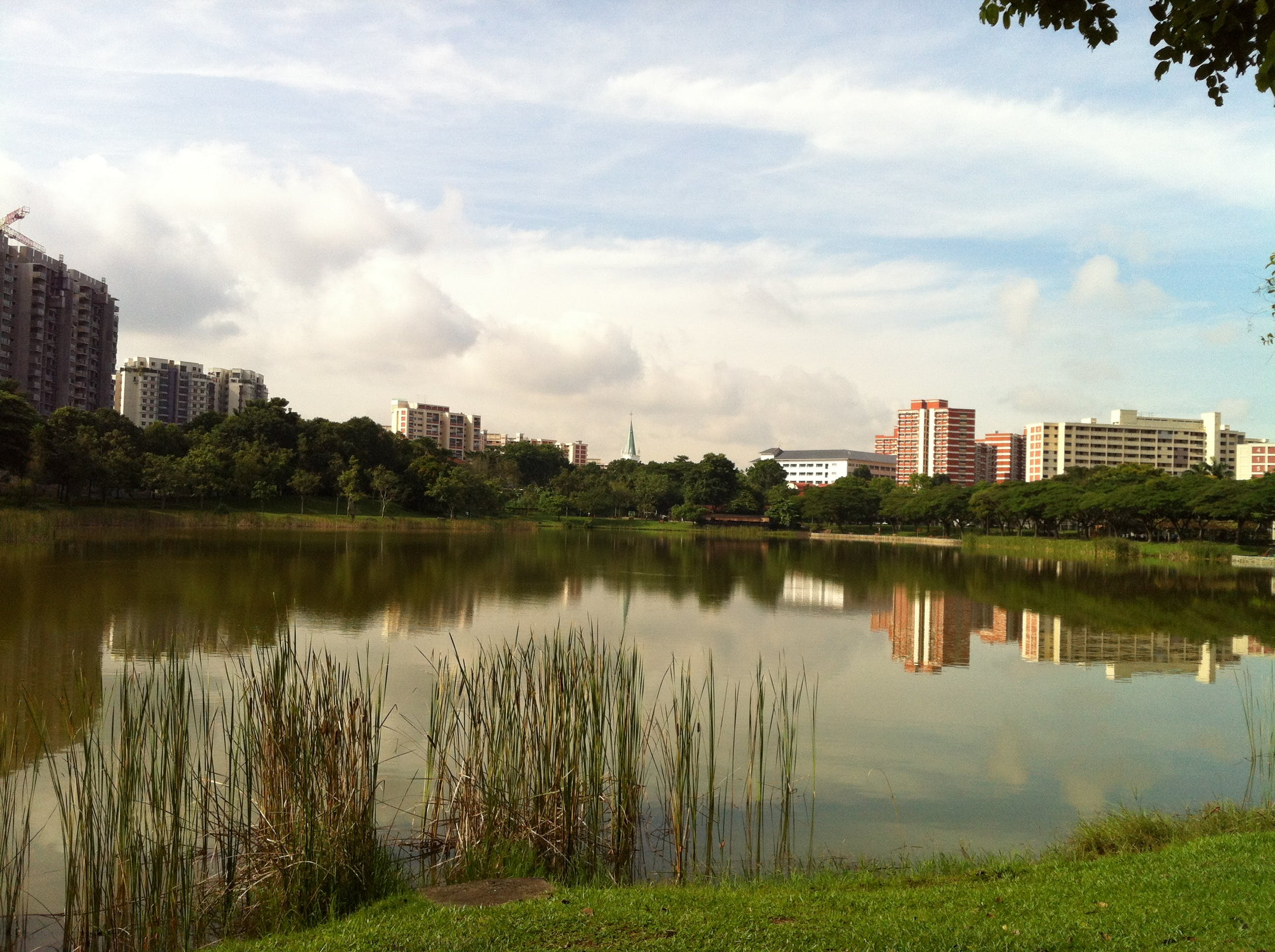 Punggol Park Pond