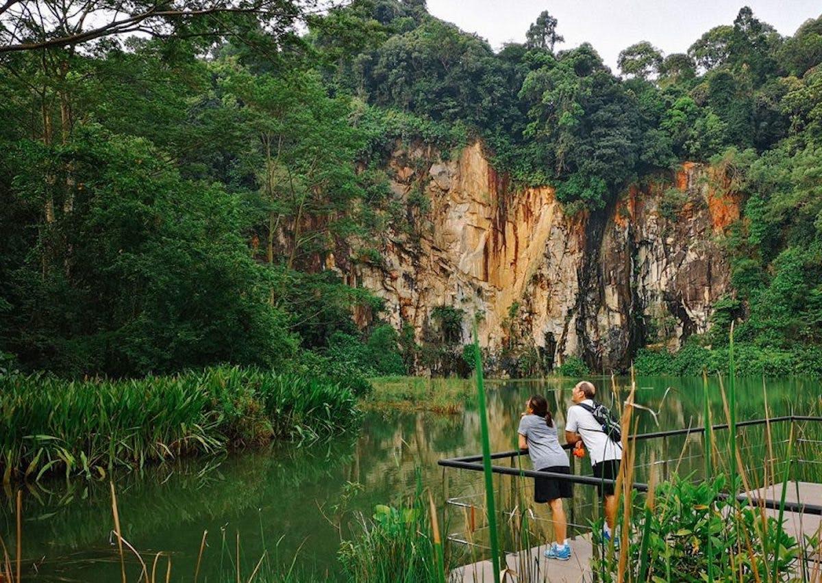 Hikers enjoying nature at Bukit Timah Nature Reserve
