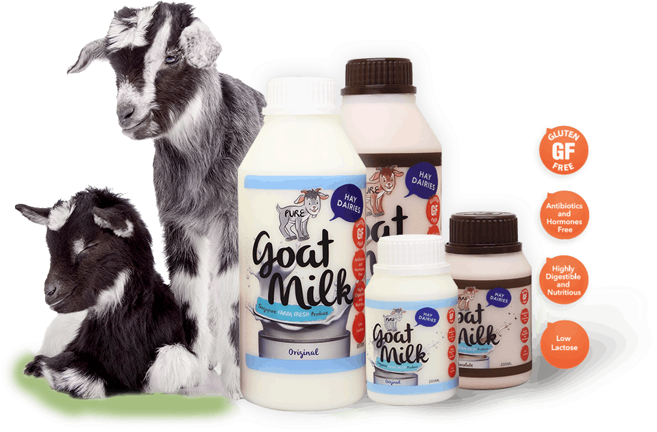 Hay Dairies goats and Goat Milk products.