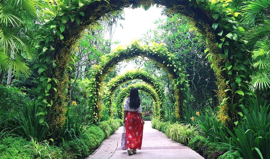 A lady stands in Singapore Botanic Gardens, which is a five-minute ride away from Hyll on Holland.