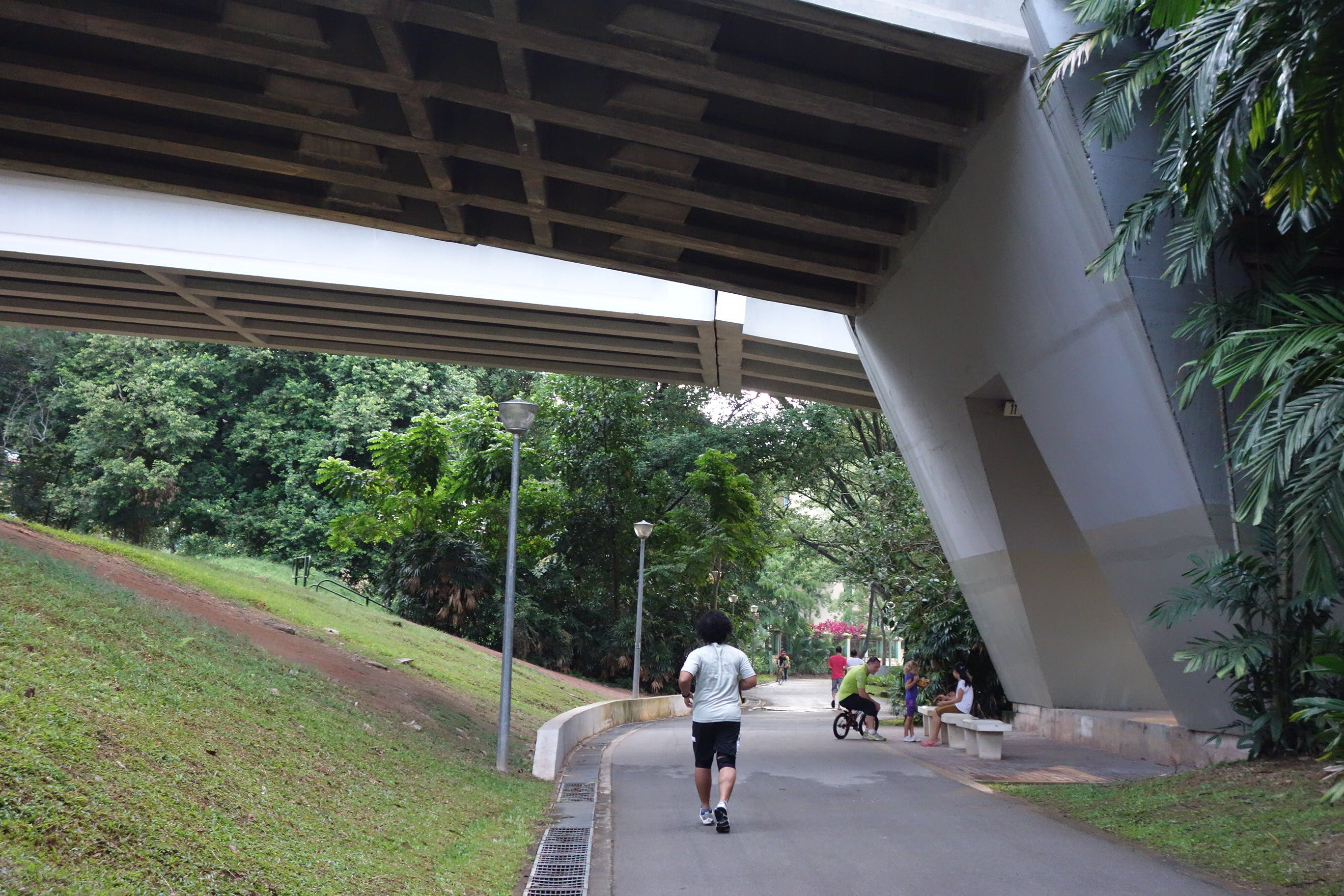 Jogging at the scenic Sungei Pandan park connector