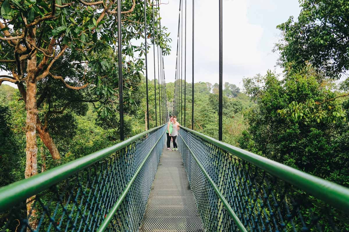 MacRitchie Reservoir Park Treetop Walk