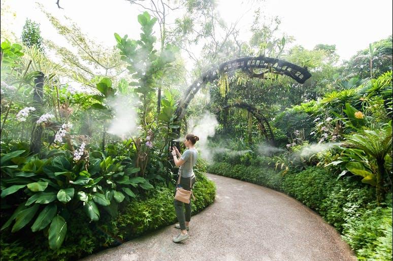 The National Orchird Garden Singapore