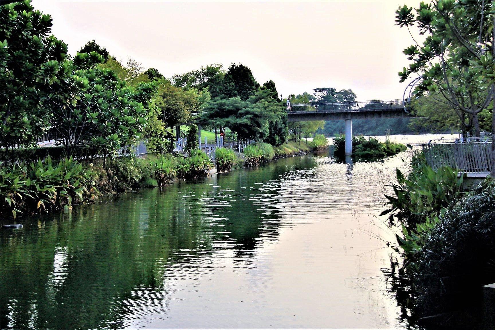 Punggol Serangoon Reservoir