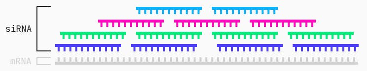 """Example of siRNA """"candidates"""" tiling the mRNA target"""