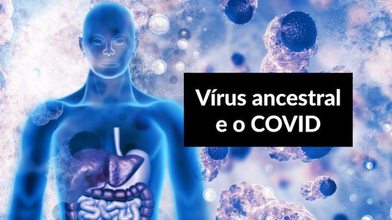 Os níveis de proteína do vírus HERV-K podem ser usados como um indicador da gravidade de casos de Covid-19