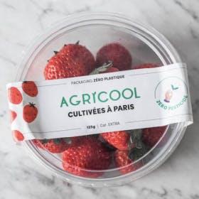 Une petite barquette de fraises Agricool