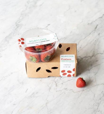 Barquette de fraises Agricool