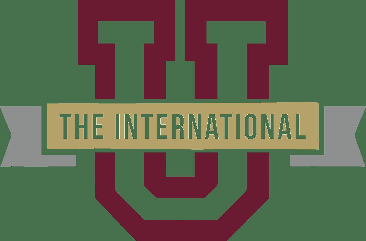 Logo - The International University