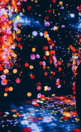 flower light display
