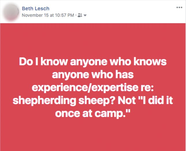 God as our shepherd meaning