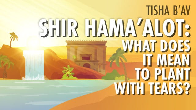 Shir Hama'alot: What Does It Mean To Plant With Tears?