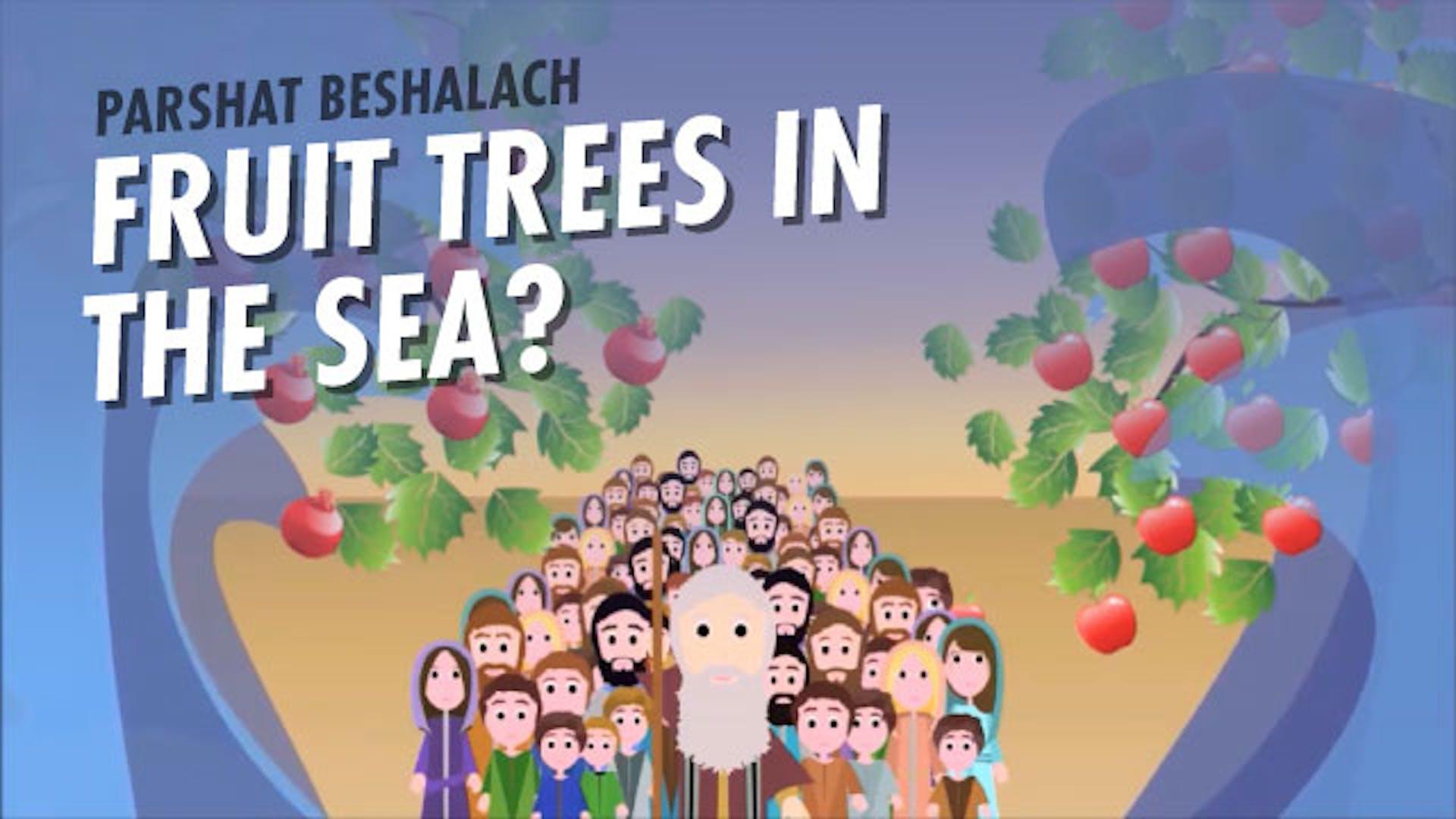 Crossing Red Sea Story Midrash
