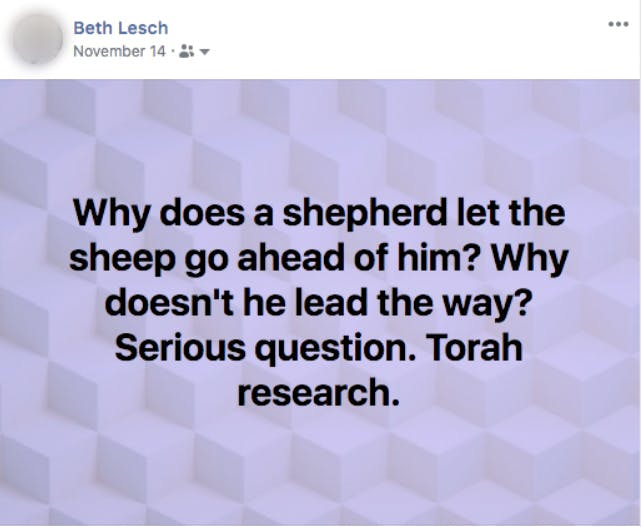 God is our shepherd we are lambs