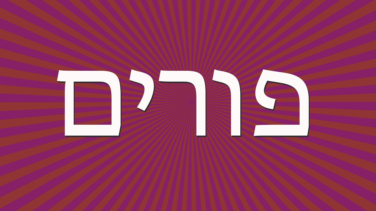 Purim word definition Hebrew