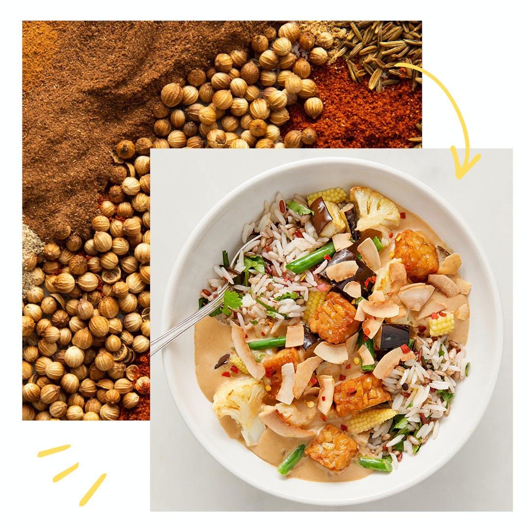 Tempeh Rendang Curry