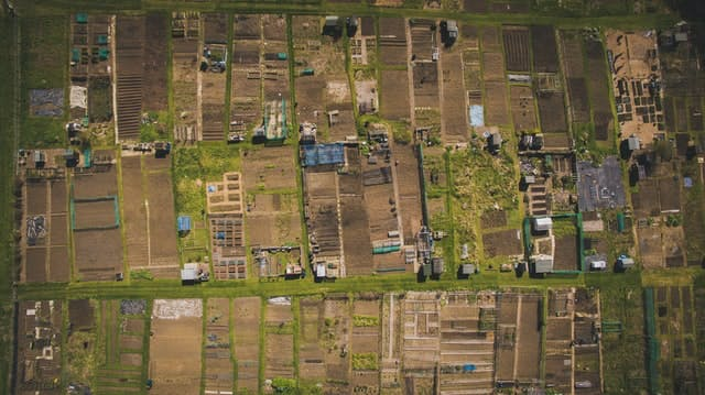 allotments from over head