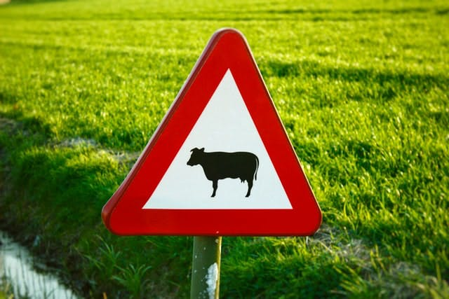 sign with cow on