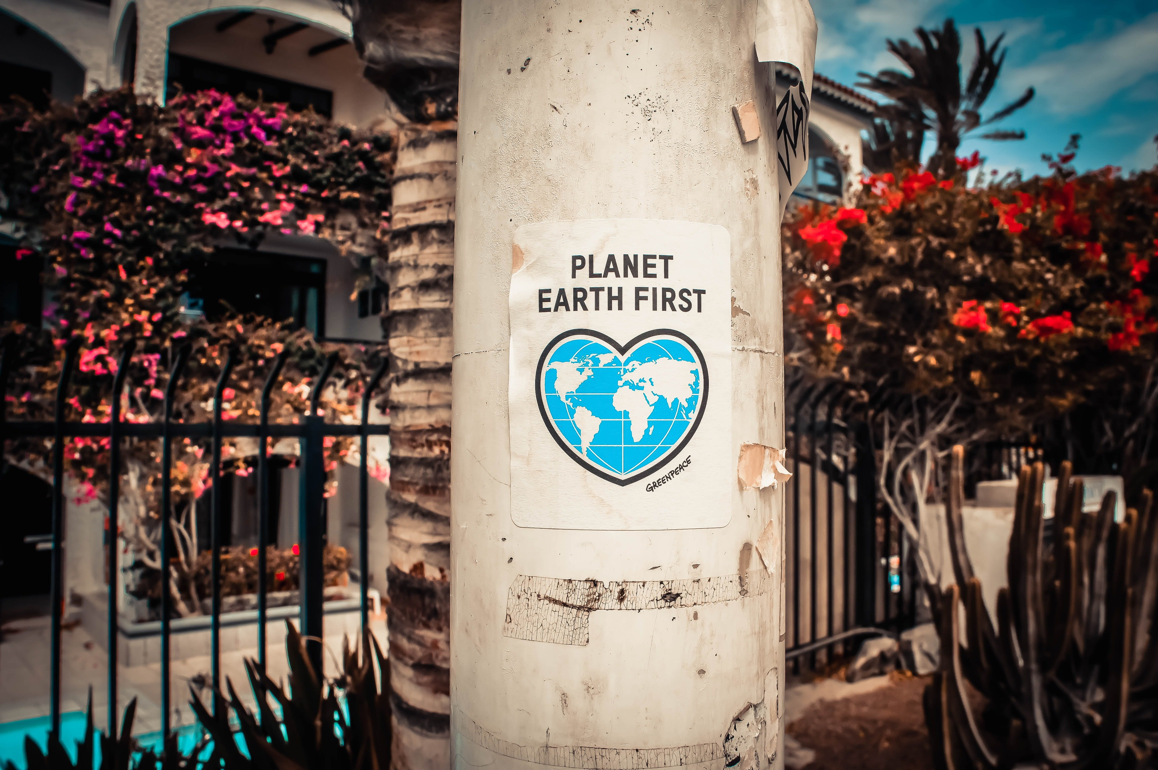 planet earth first sign