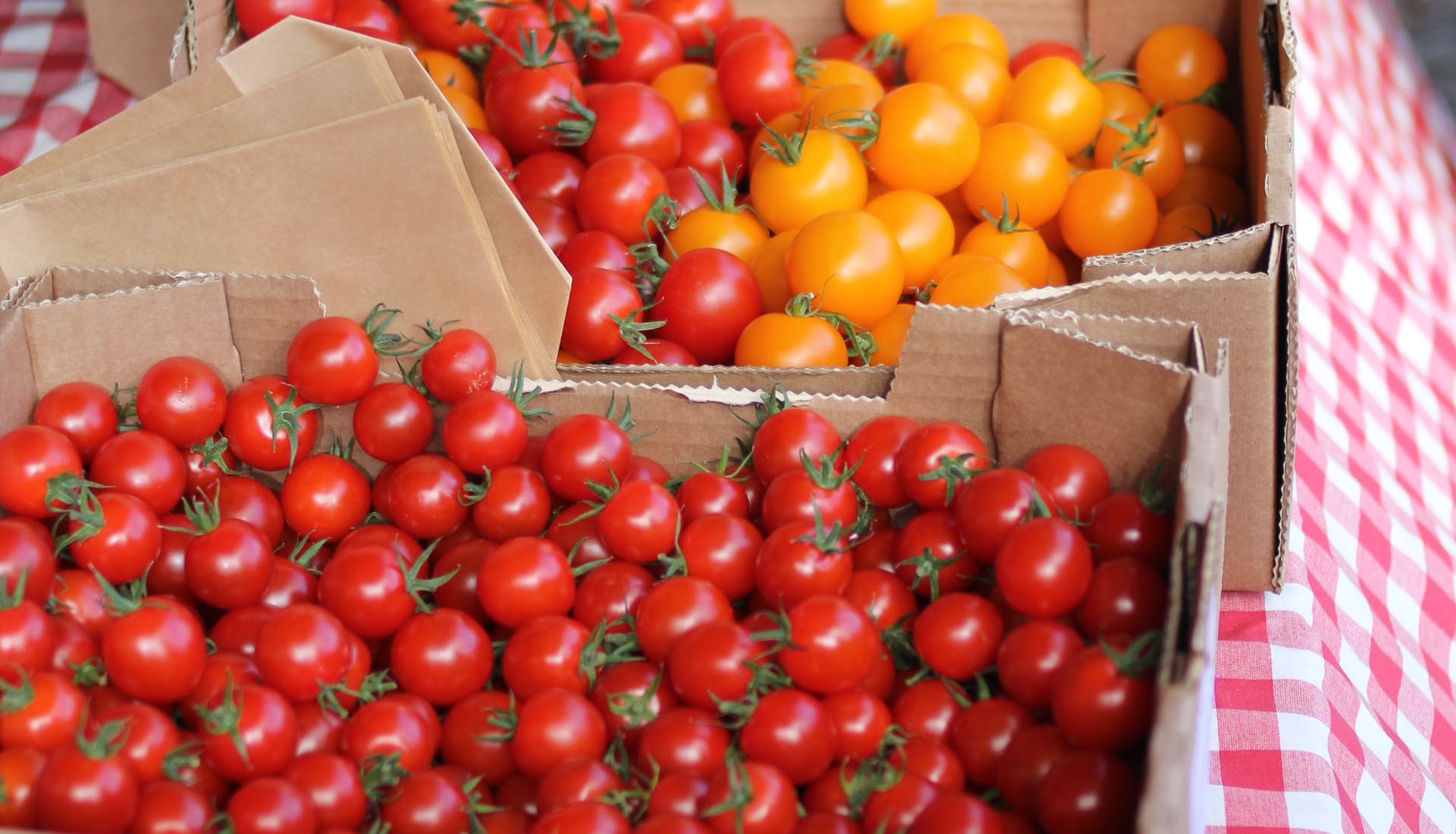 fresh tomatoes in crates