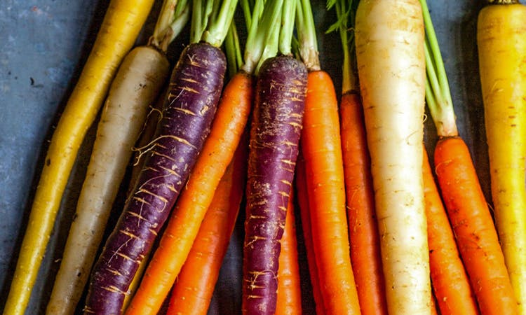 Purple, orange and yellow carrots