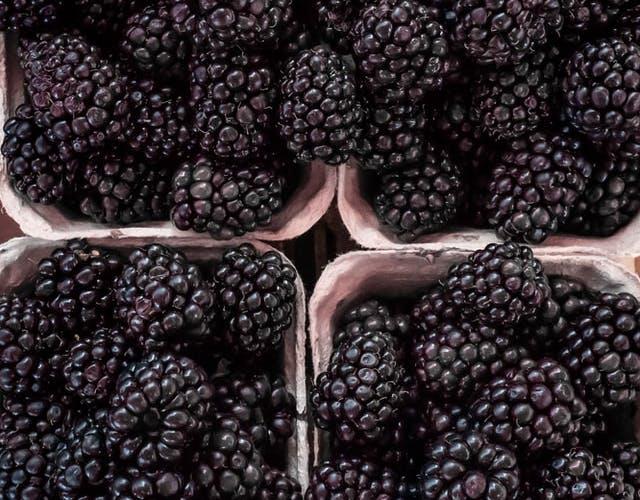 punnets of blackberries