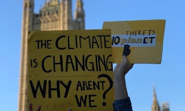 Placards at environmental protests