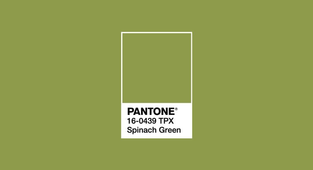 Colour chart info for spinach