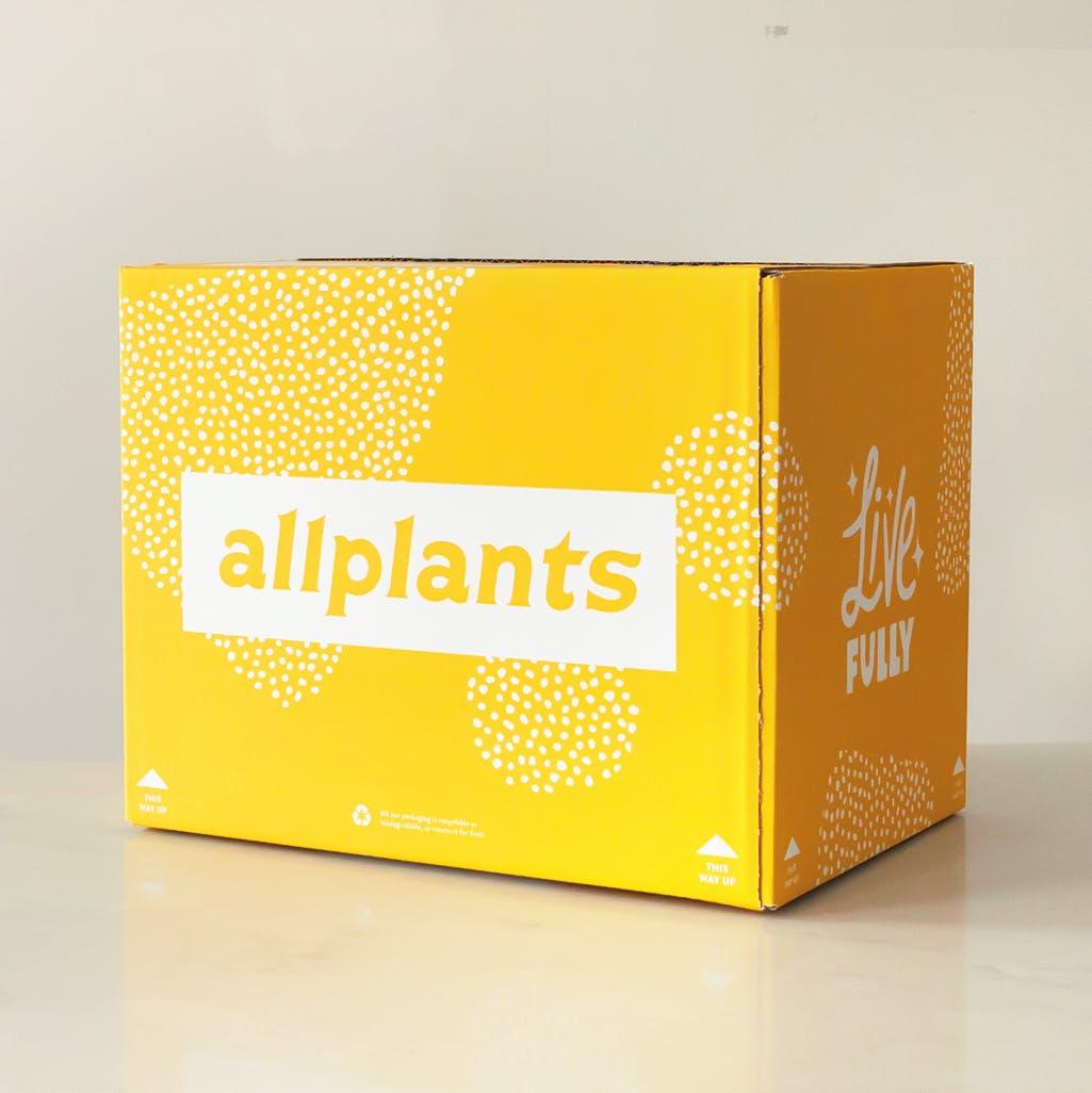 yellow allplants box