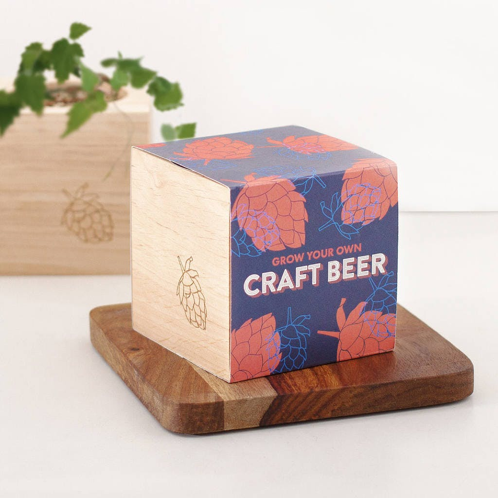 box of craft beer kit
