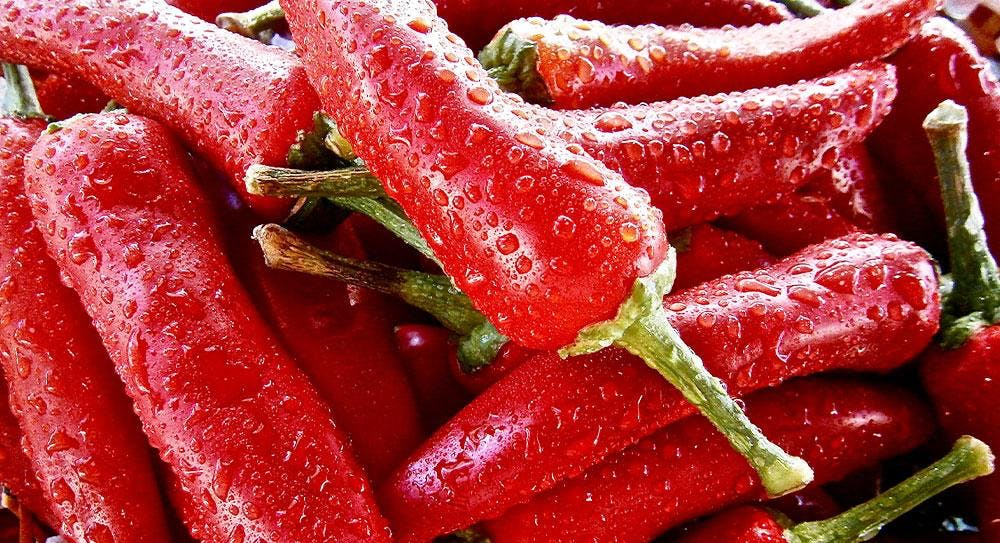 Fresh, long red peppers just washed