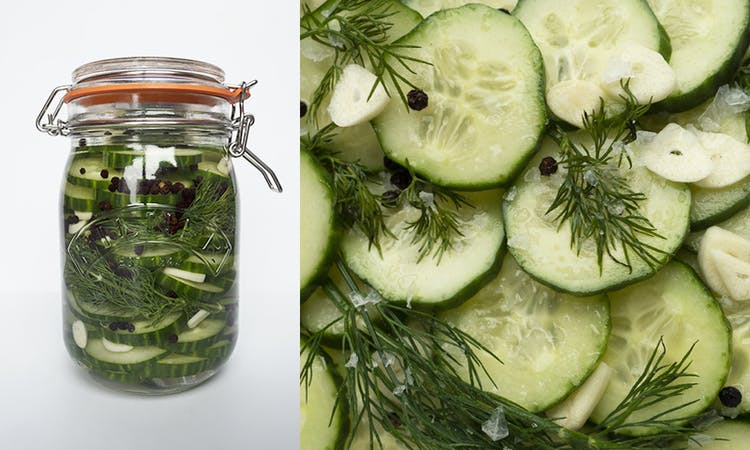Dill Pickles 101 image