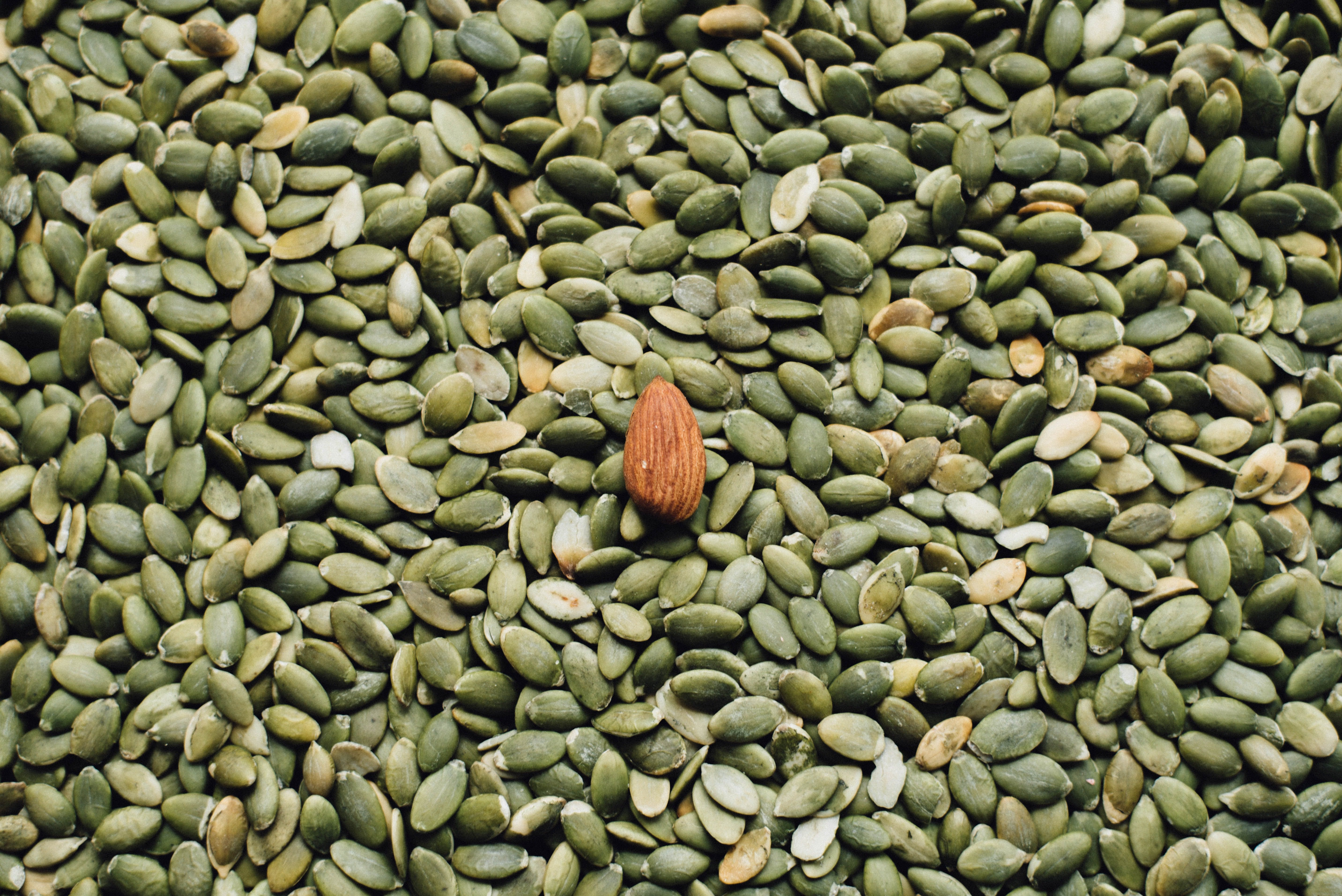 pumpkin seeds with one almond