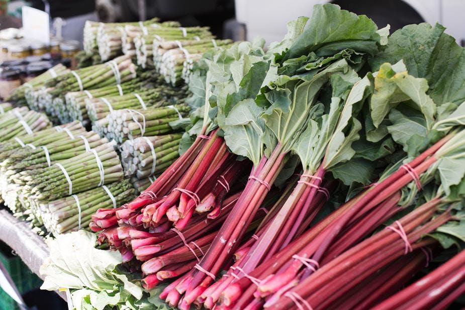 rhubarb at a farmer's market