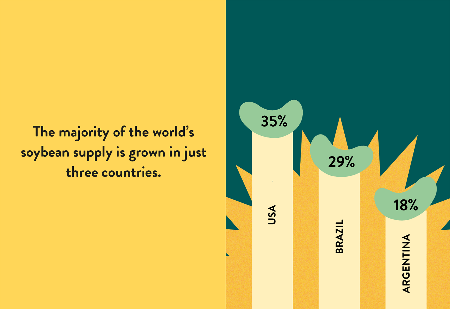 infographic showing main three countries growing soy