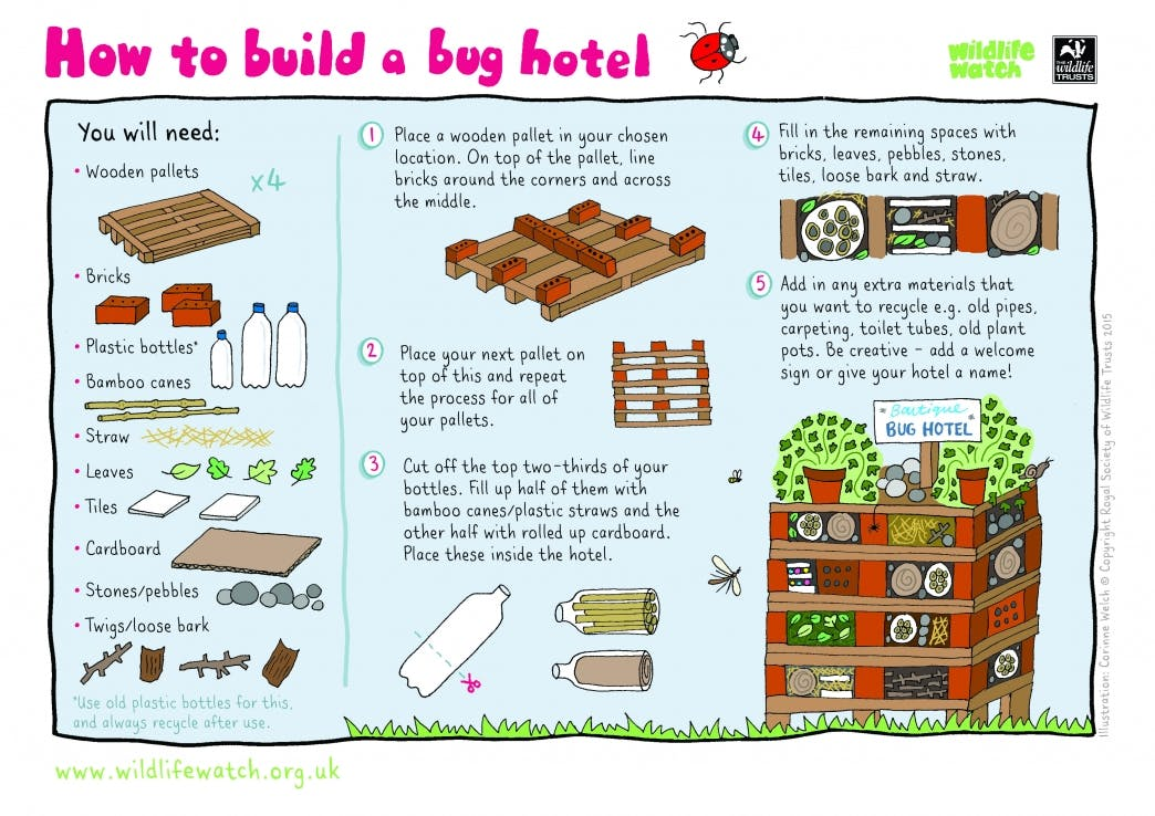 guide on how to build a bug hotel