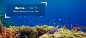 Unisee Connect Bright Investments Never Fade
