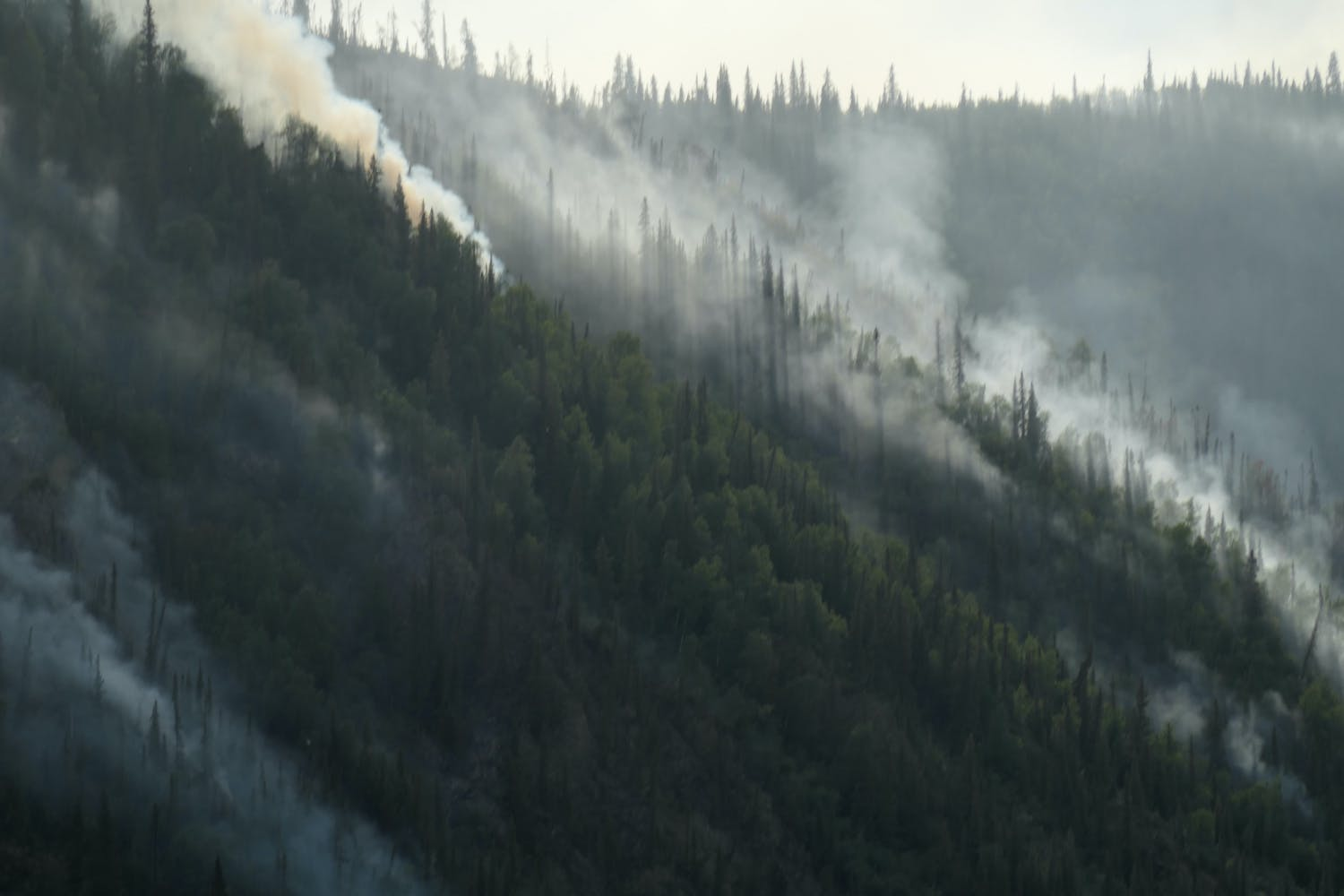 Wildfires caused by recent lightning strikes