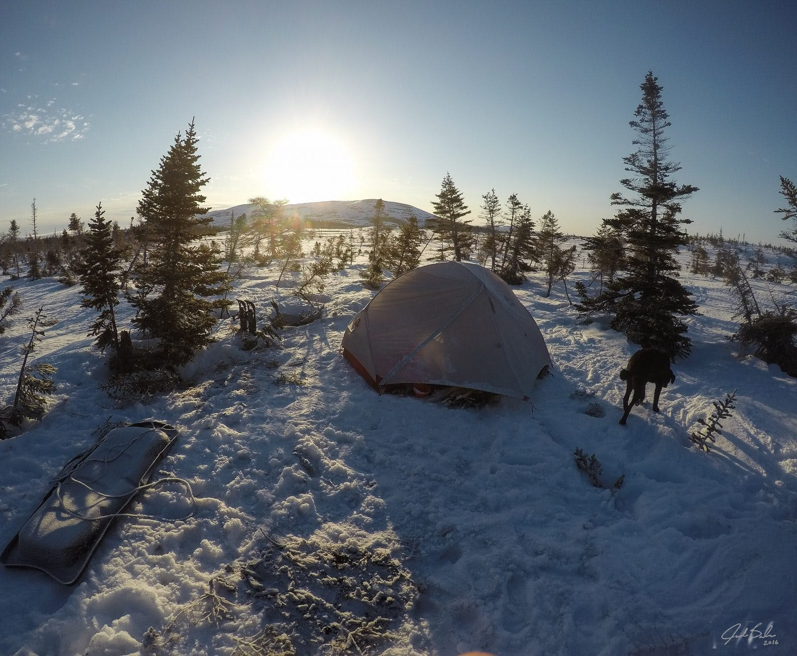 """""""A sunrise in Newfoundland's Long Range Mountains will cleanse your mind. I witnessed many. This winter site laid on upwards of 7 feet of snow. To create the camp I needed to endlessly walk the ground with my snowshoes to ensure we had a solid compacted base while Saku cheered me on. But itwas well worth it. The area was basically untouched besides the odd hunting/fishing lodge and the views are indescribable. Being here made me feel small. With barren, inhospitable land surrounding me from all angles, it gave me goosebumps that I still feel today. Chase your dreams folks, anything is possible!"""""""