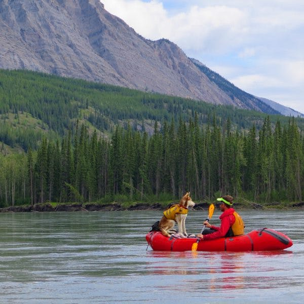 """3rd place (3rd most voted on): """"Squirrel-dog riding the bow and attempting to make Canine-Human conversation on the Nahanni River,"""" by John."""
