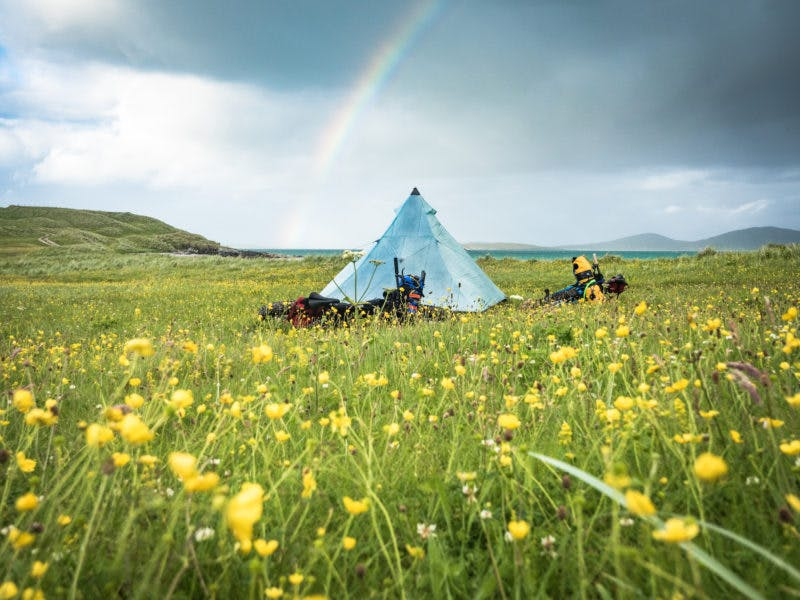 """""""Our first night on north Uist was a change for the better, when the rain finally let some sun through. In June and July the unique ecosystem of dune meadows called the Machair comes into flower, and we slept on a carpet of wildflowers with just bumblebees and a very friendly dog (that we called Jerry) for company. He followed us for miles from the last farm we passed. The Outer Hebrides stand out for me for the sheer number of peaceful, beautiful and unexpected camp spots"""" Photo: Huw oliver"""